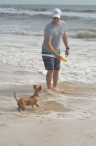 Jersey couldn't care less about the waves coming for her... keeping her eye on the prize, her Frisbee!
