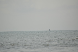 If you look very very close you will see a black smudge... that smudge is a whale!